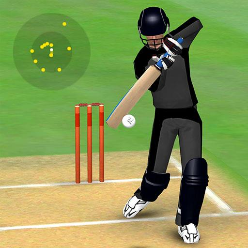 Smashing Cricket – a cricket game like none other