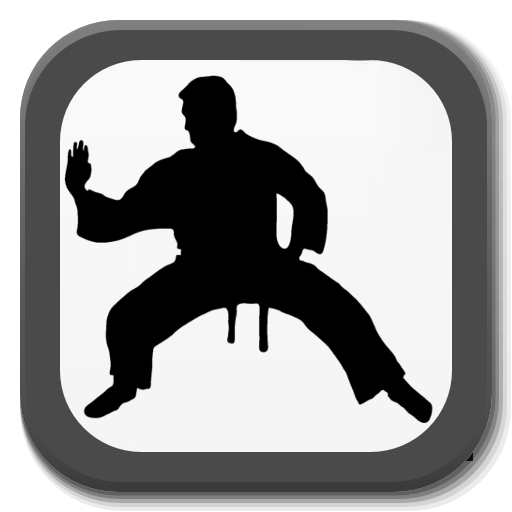 Martial Arts – Training and workouts